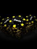 Bwin Poker désormais sur Android